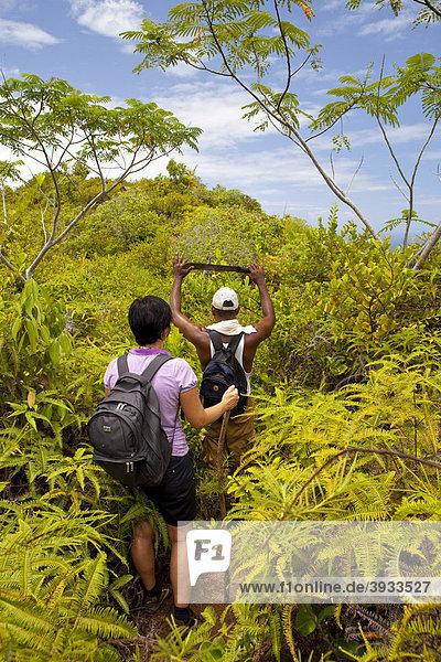 Wanderung durch tropische Vegetation mit einem kreolischen Führer mit Machete  Insel La Digue  Seychellen  Afrika  Indischer Ozean