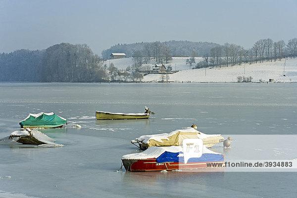 Im Eis festgefrorene Motorboote  Schiffenensee  Pensier  Freiburg  Schweiz  Europa