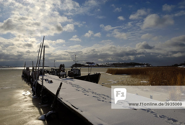 Fishing boats lying in the icy bodden at the pier in Gross Zicker  Gager community  Biosphaerenreservat Suedost-Ruegen  South-East Ruegen biosphere reserve  Ruegen district  Moenchgut peninsula  Mecklenburg-Western Pomerania  Germany  Europe