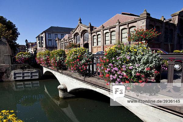 Altstadt  Fischerstaden  Quai de la Poissonnerie  Colmar  Elsass  Frankreich  Europa