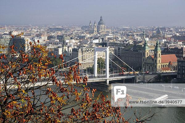 ErzsÈbet hÌd  ErzsÈbet Bridge or Elisabeth Bridge  Budapest  Hungary  Europe