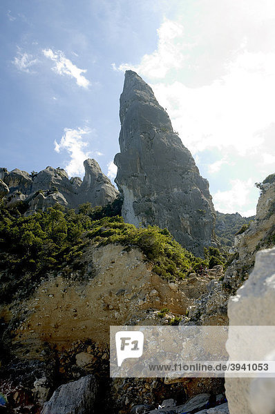 Felsnadel Punta Carrodi  Golf von Orosei  Ostküste Sardinien  Italien  Europa
