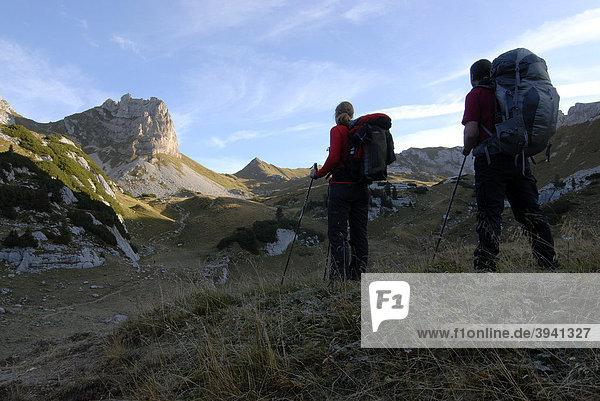 Wanderer  junge Frau und Mann gehen früh am Morgen mit Tourenrucksack und Trekkingstöcken Richtung Rosskopf  2257 m  durch das noch von Reif bedeckte Gras  Rosskopf  Rofan  Achensee  Tirol  Österreich  Europa