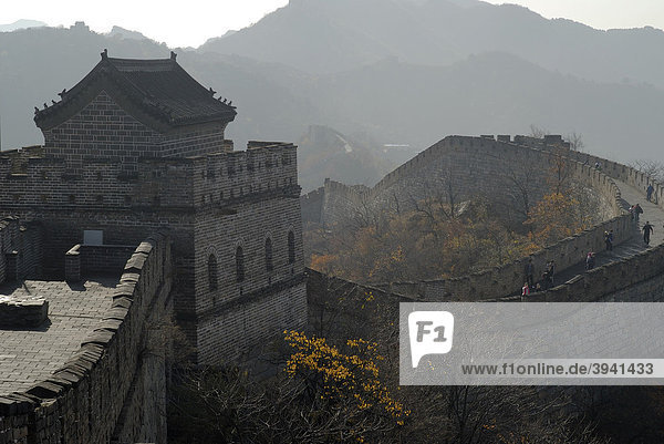 Great Wall of China at Mutianyu in the fall  near Beijing  China  Asia