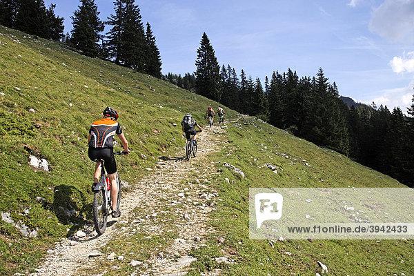 Bike riders on alpine path at the Kampenwand  Chiemgau  Upper Bavaria  Germany  Europe