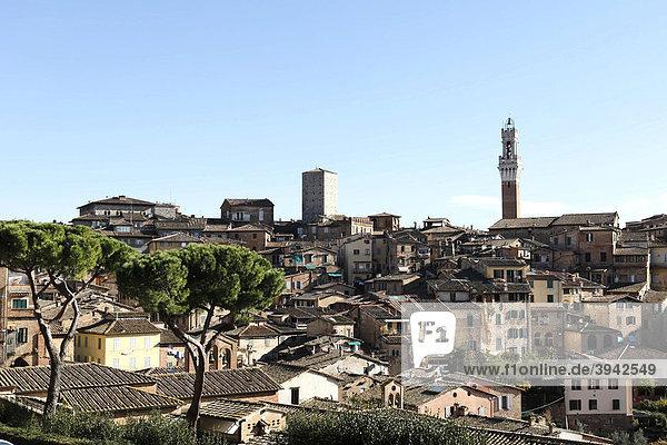 Stadtansicht mit Turm Torre di Mangia  Siena  Toskana  Italien  Europa