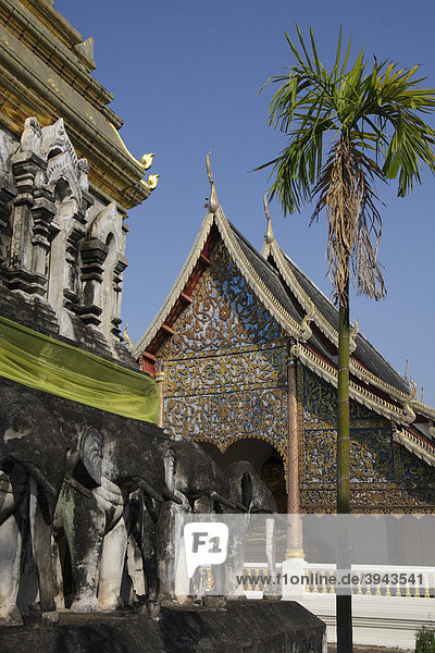 Elefantenstatuen und Palme vor dem Tempel Wat Chiang Man  Chiang Mai  Nordthailand  Thailand  Asien