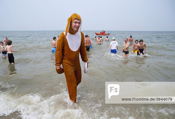 Young man dressed as the Easter Bunny during the traditional Paasduik Easter diving event on the beach in the North Sea resort of Renesse  opening event of the holiday season  Duiveland Schouwen  Zeeland  Netherlands  Europe