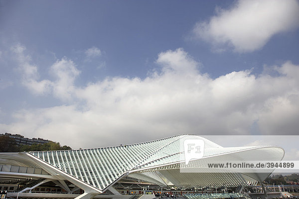 Gare de LiËge-Guillemins von Architekt Santiago Calatrava in Lüttich  LiËge  Belgien  Europa