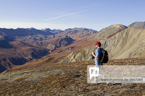 Wanderer  Blick vom Sheep Mountain auf Red Castle Ridge  St. Elias Mountains  Kluane Nationalpark und Reservat  Yukon Territory  Canada