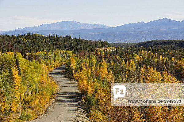 Straße im Chilcotin Country zwischen Williams Lake und dem Küstengebirge auf dem Weg nach Bella Coola  Kanada