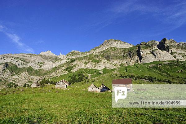 Schwägalp mit Säntis  dem höchsten Berg im Alpsteingebirge  Kanton Appenzell  Schweiz  Europa