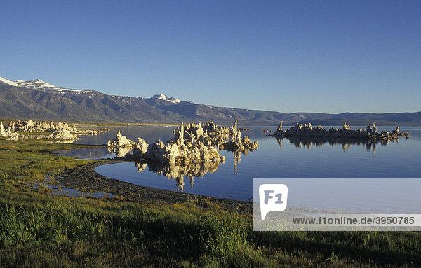 Tuffsteine am Mono Lake  bizarr  Kalifornien  Amerika  USA