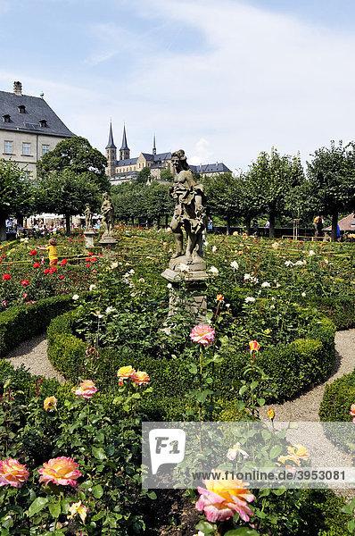 Rosengarten hinter der Neuen Residenz  hinten Dom  Bamberg  Franken  Bayern  Deutschland