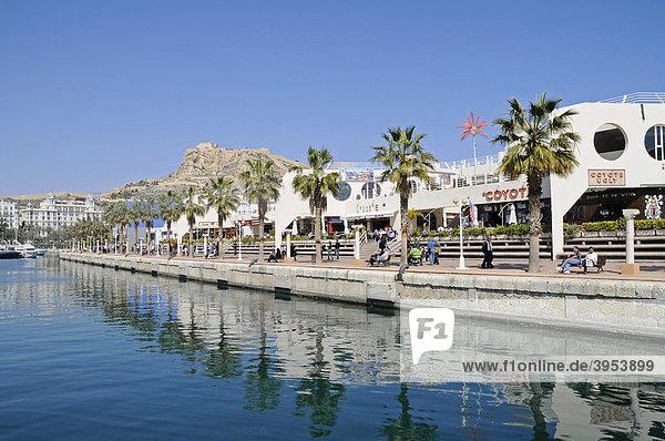 Promenade  Palmen  Castillo Santa Barbara  Burg  Hafen  Alicante  Costa Blanca  Spanien  Europa
