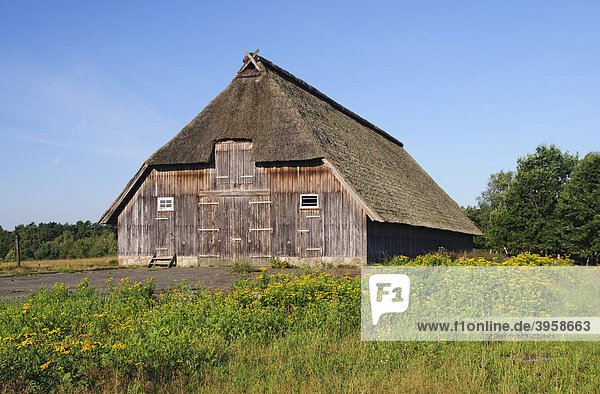 Historischer Schafstall bei Wesel in der Lüneburger Heide  Naturpark Lüneburger Heide  Niedersachsen  Deutschland  Europa