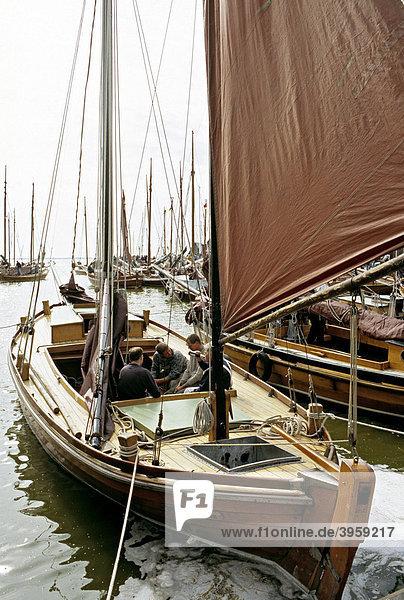 Zeesboot-Regatta  Althagen  Ahrenshoop  Fischland Darß-Zingst  Mecklenburg-Vorpommern  Deutschland  Europa