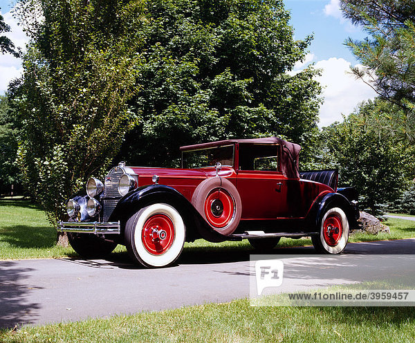 1931 Packard Cabriolet