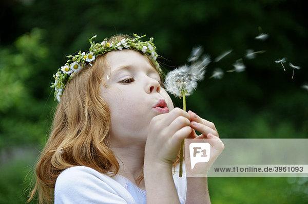 Junges Mädchen mit Blütenkranz im Haar und Löwenzahn Pusteblume