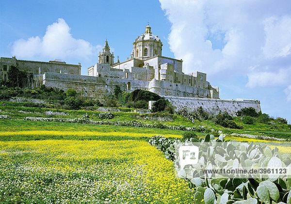 Stadtmauer und Kathedrale St. Peter und Paul  Mdina  Malta  Europa