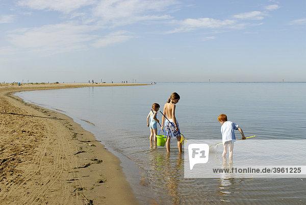 Kinder spazieren mit Fischernnetz und Eimer am Strand am Meer  Bibione  Adria  Venetien  Veneto  Italien  Europa