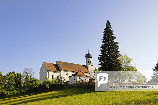 Pfarrkirche St. Kilian  Bad Heilbrunn  Oberbayern  Bayern  Deutschland  Europa