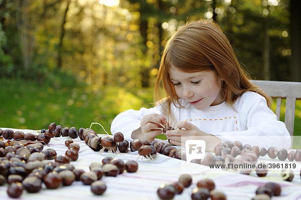 Mädchen spielt im Garten mit Kastanien  Kastanienfiguren  Kastanienmännchen