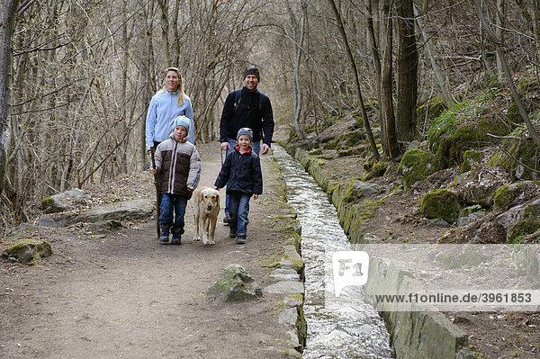 Am Schnalser Waalweg  Schnalswaalweg  Schnalstal  Vinschgau  Südtirol  Italien Europa