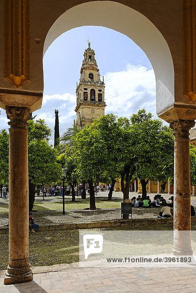 Vorhof  Patio de los Naranjos  Mezquita  ehemalige Moschee  heute Kathedrale  Cordoba  Andalusien  Spanien  Europa
