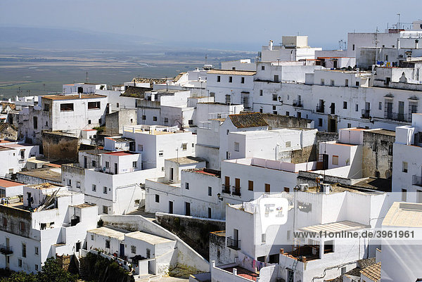 White painted houses of the historic town  Vejer de la Frontera  Andalusia  Spain  Europe