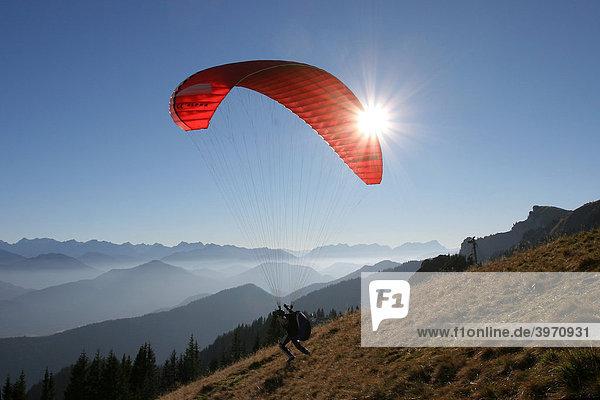 Gleitschirmflieger am Brauneck  Lenggries  Bayern  Deutschland