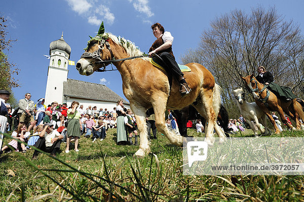 Georgiritt um die Schimmelkapelle in Ascholding  Oberbayern  Bayern  Deutschland  Europa