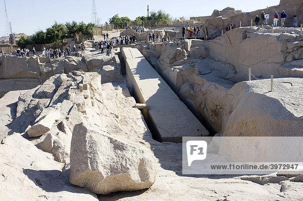 Unfinished obelisk  stone quarry  Assuan  Egypt  Africa