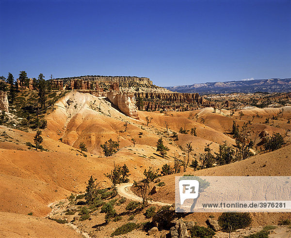 Bryce-Canyon-Nationalpark  Navajo Trail  Erosionsformen  Utah  USA