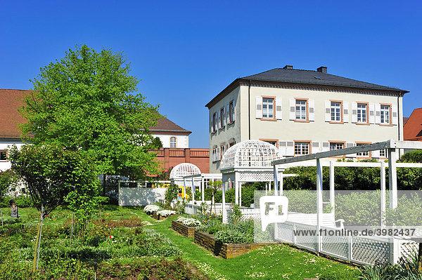 Rosengarten  Ettlingen  Schwarzwald  Baden-Württemberg  Deutschland  Europa