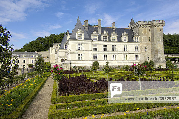 Schloss Villandry und Gärten  Ch'teau de Villandry  Indre-et-Loire  Touraine  Loire  Frankreich  Europa