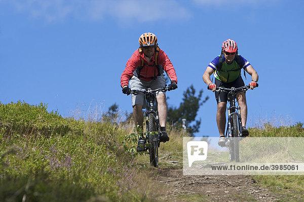 Mountainbike-Fahrer in Heidelandschaft bei Usseln,  Hessen,  Deutschland