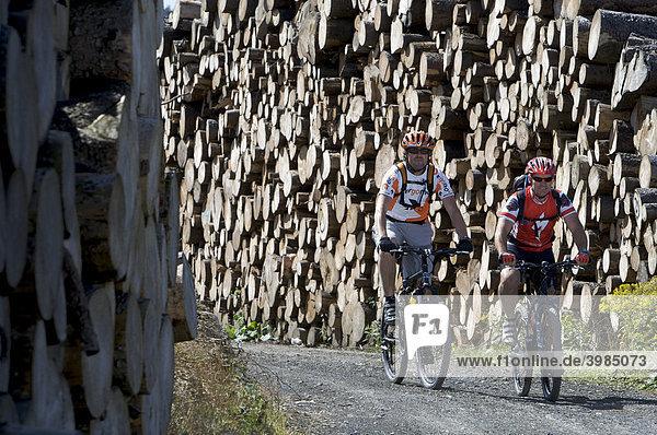 Mountainbike Fahrer zwischen Kyrill-Holz am Ettelsberg bei Willingen,  Hessen,  Deutschland
