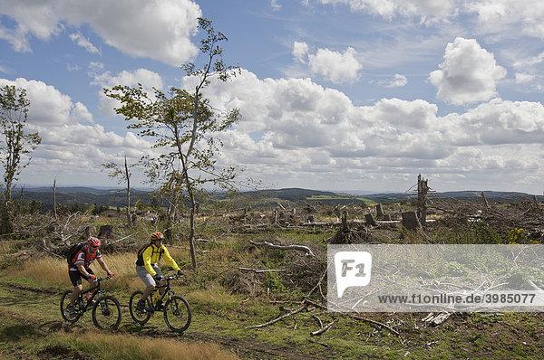 Mountainbike Fahrer am Grenz-Kammweg,  vom Orkan Kyrill entwaldet,  zwischen Nordrhein-Westfalen und Hessen nördlich von Willingen,  Hessen,  Deutschland