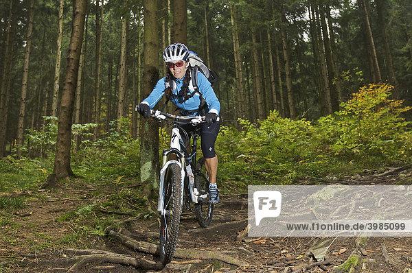 Mountainbike-Fahrerin auf Wurzeltrail im Wald am Heuberg bei Nußdorf am Inn  Bayern  Deutschland