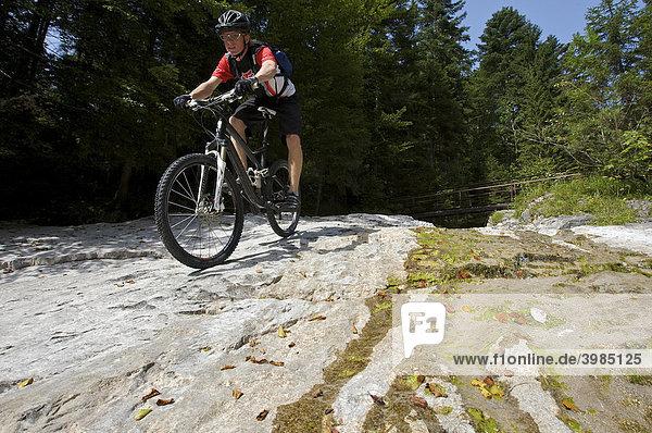Mountainbike rider riding over shelves of rock in Eschenlainetal Valley  Eschenlohe  Upper Bavaria  Bavaria  Germany  Europe