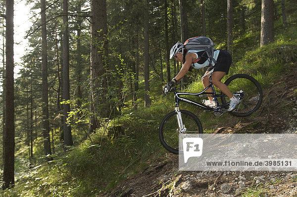 Mountainbike-Fahrerin auf Wurzeltrail im Wald bei Garmisch  Oberbayern  Bayern  Deutschland