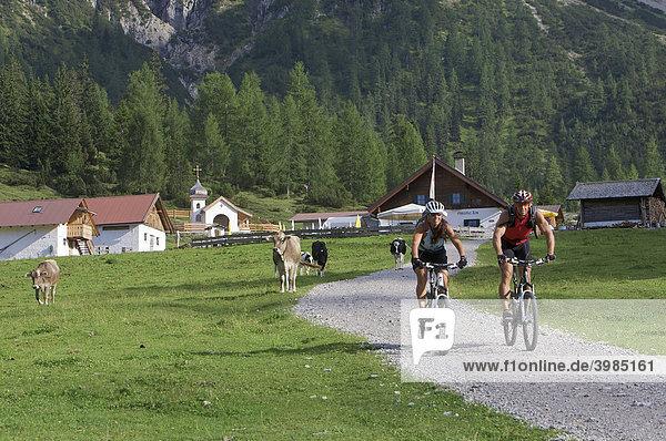 Mountainbike-Fahrerin und -Fahrer an der Eppzirler Alm  bei Scharnitz  Tirol  Österreich