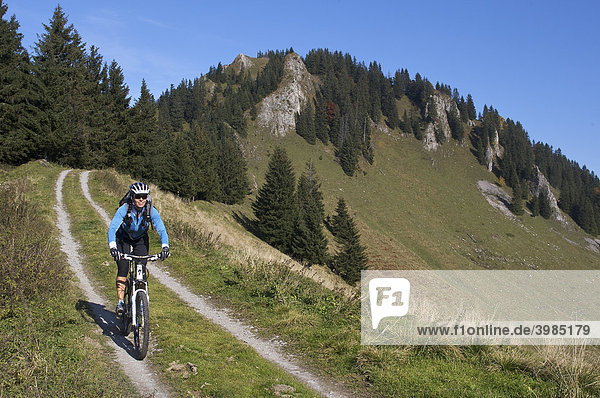Montainbike rider,  female,  in autumn,  on Hochries Mountain,  in front of Karkopf Mountain,  Chiemgau Alps,  Bavaria,  Germany