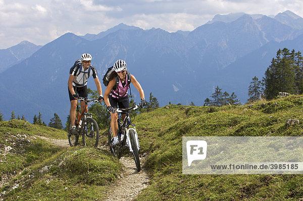 Mountainbike-Fahrerin und -Fahrer an der Wallgauer Alm mit Blick auf's Karwendel  Wallgau  Oberbayern  Bayern  Deutschland