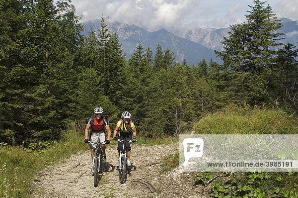 Mountainbike-Fahrerin und -Fahrer nordwestlich der Hoch-Törle-Hütte  Ehrwald  Tirol  Österreich