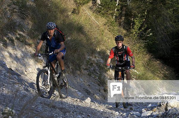 Mountainbike-Fahrer im Eschenlainetal  Eschenlohe  Oberbayern  Bayern  Deutschland