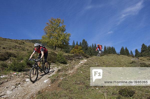 Mountainbike-Fahrer am Gaisberg,  Rettenbach,  Tirol,  Österreich,  Europa