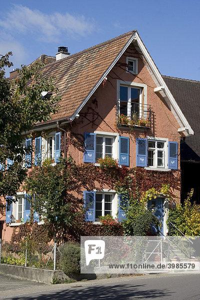 Wilder Wein an Wohnhaus  Hagnau  Bodensee  Baden-Württemberg  Deutschland