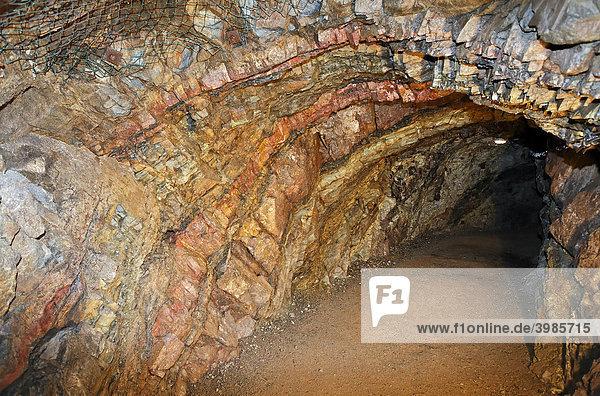 Bergwerksstollen mit Eisenerz-Gesteinsformationen  Schaubergwerk Büchelberg  Wernigerode  Harz  Sachsen-Anhalt  Deutschland  Europa Bergwerksstollen mit Eisenerz-Gesteinsformationen, Schaubergwerk Büchelberg, Wernigerode, Harz, Sachsen-Anhalt, Deutschland, Europa
